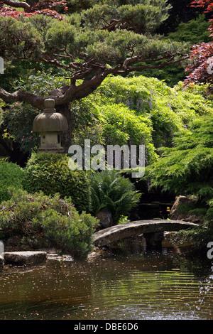 The Japanese Garden, Cottered, Hertfordshire. - Stock Image