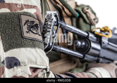 Chimera chevron of paratrooper of French 1st Marine Infantry Parachute Regiment. - Stock Image