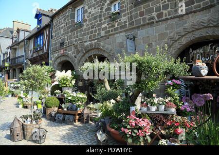 View of flower shop display in Grande Rue des Stuarts, Dol de Bretagne, Ille et Vilaine, Brittany, France - Stock Image