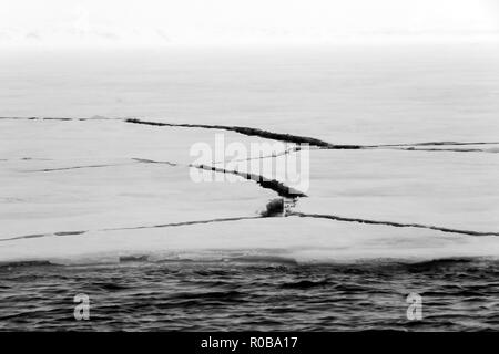 Cracks in Ice. Svalbard, Norway - Stock Image
