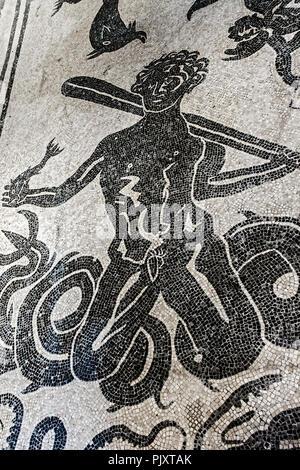 God Neptune Mosaic Womans Bath Herculaneum Italy - Stock Image