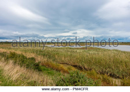 View across Lymington and Keyhaven Marshes, former salt marsh and now a nature reserve. - Stock Image