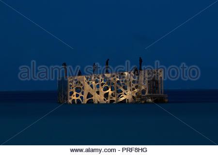 Coralarium sculpture installation at night in Maldives - Stock Image