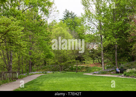 JONESBOROUGH, TN, USA-4/28/19: Woman meditating on a bench in the distance,  in a beautiful green, grassy park on a spring day. - Stock Image
