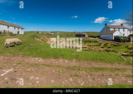 The rural farming hamlet of Forest in Teesdale, County Durham, North East England, UK in spring sunshine - Stock Image