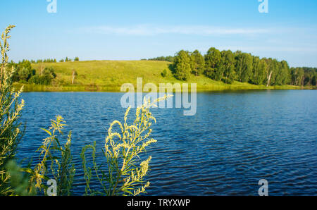 beautiful landscape with the river in siberia on sunny summer day - Stock Image