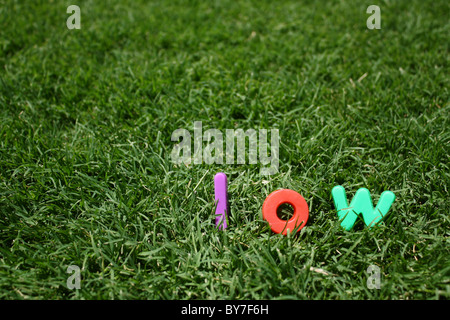 The word 'low' spelled out in colourful plastic letters, on green grass - Stock Image