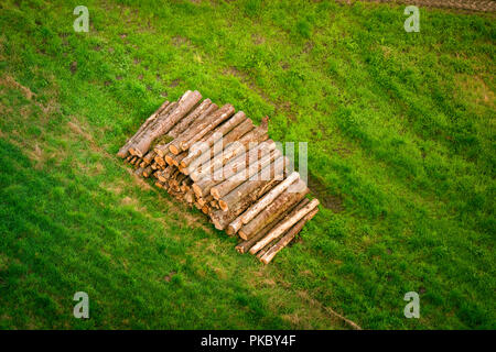 Woodstack with logs on a green field in rural surroundings in the summer - Stock Image
