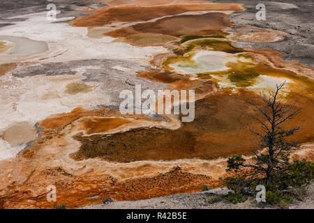 Colorful sediments. Yellowstone National Park. Wyoming. - Stock Image