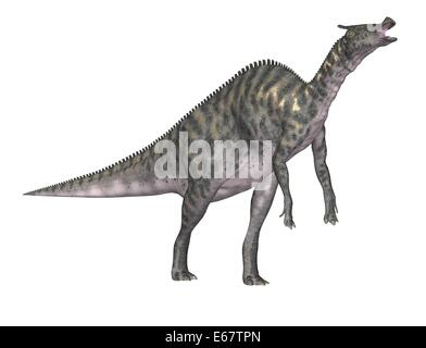 Dinosaurier Saurolophus / dinosaur Saurolophus - Stock Image