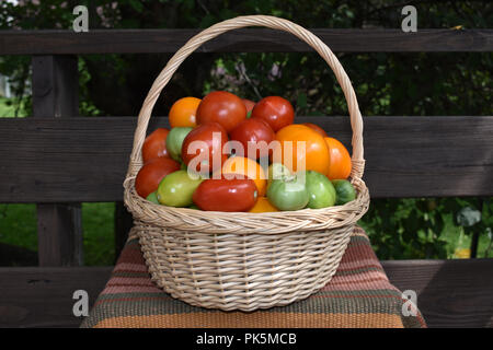 A basket of red, yellow and green tomatoes. - Stock Image