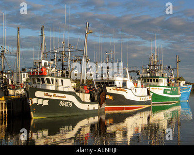 Fishing boats unloading fish on quay in the Harbour of Twillingate, Newfoundland, Atlantic Canada - Stock Image
