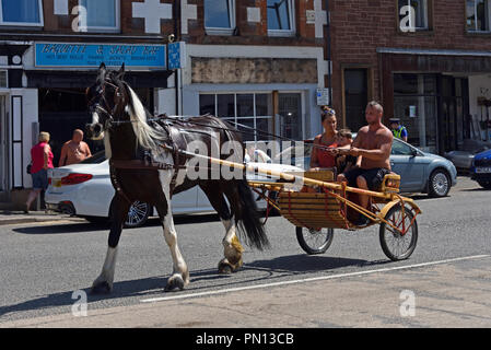 Gypsy Traveller family riding in a trotting cart. Appleby Horse Fair 2018. The Sands, Appleby-in-Westmorland, Cumbria, England, United Kingdom, Europe - Stock Image