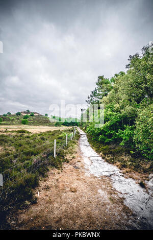 Fence along a hiking trail on dry plains in cloudy weather - Stock Image