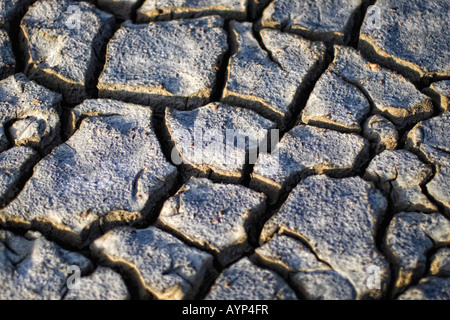 selective focus image of cracked dry earth parched by the Caribbean sun - Stock Image