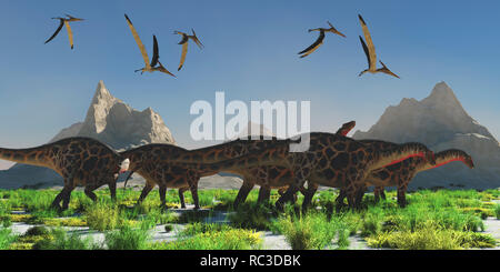 Dicraeosaurus Dinosaur Herd - A flock of Pteranodon reptiles fly over a herd of Dicraeosaurus dinosaurs during the Jurassic Period. - Stock Image