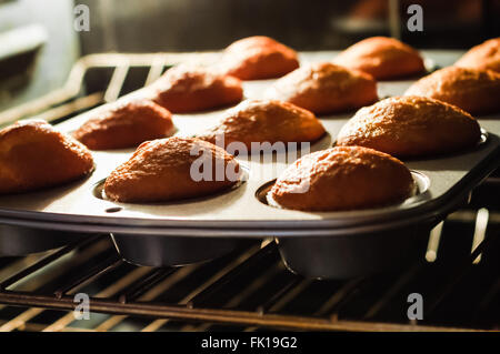 Cupcakes in a cupcake pan baking on an oven rack - Stock Image