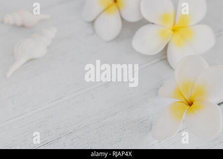 spa inspired set with copyspace surrounded by flowers and seashells on light cooured wood, concept of luxury and organic products - Stock Image