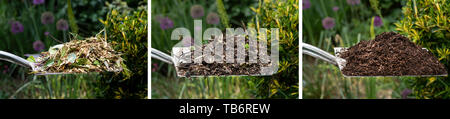 Three images showing shredded, partial decomposition and well rotted compost. - Stock Image