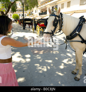 Woman reaching out to pony in Mijas Pueblo, Costa del Sol, Andalucia, Spain - Stock Image