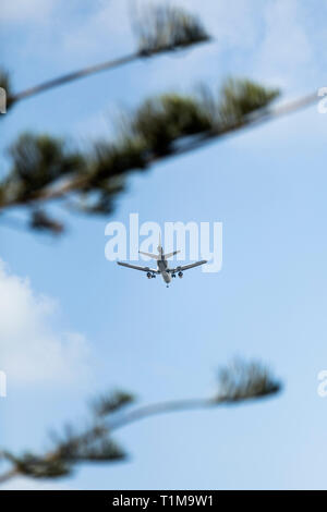Airplane flying in sunny blue sky - Stock Image