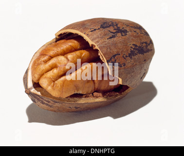 A half opened pecan and shell on a white background. - Stock Image