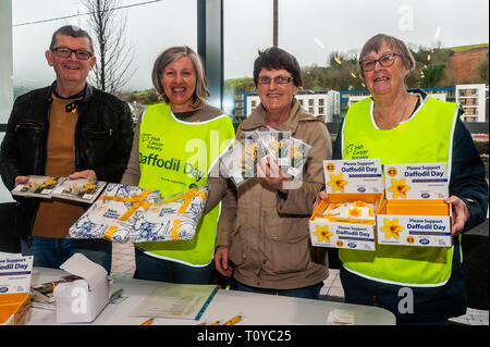 Bantry, West Cork, Ireland. 20th March, 2019. Despite the rain, volunteers were out collecting for the annual Irish Cancer Society's Daffodil Day in various locations around West Cork this morning. Collecting in Supervalu supermarket, Bantry were Andrew Moore, Una O'Sullivan, Martina Murphy and Barbara Malin, all from Bantry. Credit: Andy Gibson/Alamy Live News. - Stock Image