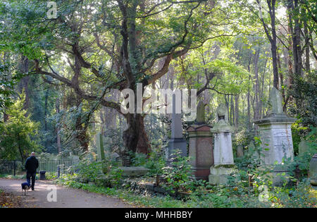 Spring in Tower Hamlets Cemetery Park, Mile End, East London - Stock Image
