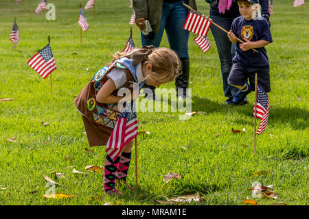 Los Angees, California USA 26 May 2018 Scouts place flags on Veteran's graves to honor them on Memorial Day. Credit: Chester Brown/Alamy Live News - Stock Image