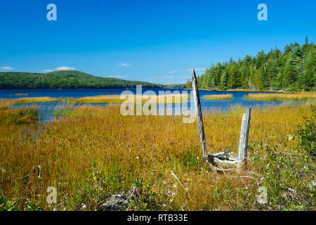 Eagle Lake seen from the grassy shore on a sunny afternoon. Acadia National Park, Maine, USA. - Stock Image