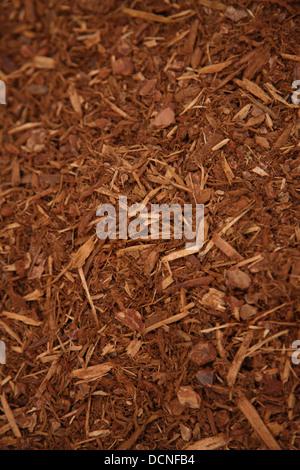 Background of Garden bark mulch - Stock Image