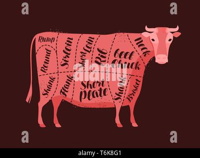 Cow diagram for the butcher. Butcher shop, beef, meat vector illustration - Stock Image