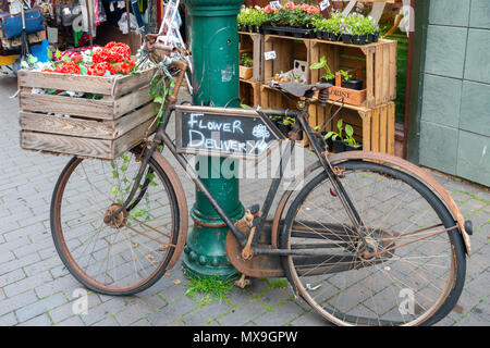 A old fashioned 'trade' bicycle formerly used for deliveries now promoting Cream and Browns Florist in Middlesbrough - Stock Image