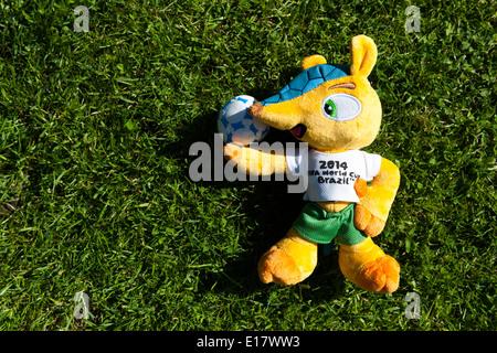 'Fuleco the Armadillo' Mascot for Brazil World Cup 2014. - Stock Image