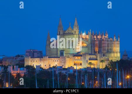Palma city at night - Stock Image
