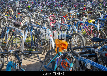 A forest of parked bicycles outside Oxford Railway Station - Stock Image