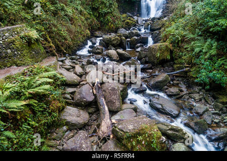 Torc Waterfall, Killarney National Park, County Kerry, Ireland - Stock Image