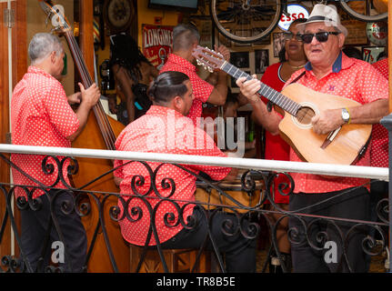 Muscians play and sing during the day in a restaurant in the Old Town, Havana, Cuba, Caribbean - Stock Image