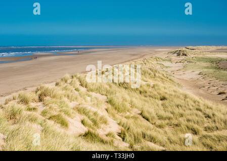Sand dunes running along Holkham bay beach & Nature reserve on North Norfolk coast, East Anglia, England, UK. - Stock Image