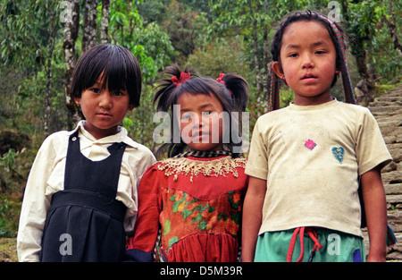Three little maids from school Primary School children girls near Chomrong on Annapurna circuit Nepal Himalaya - Stock Image