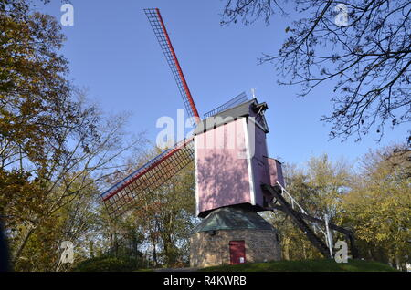Nieuwe Papegaaii windmill, one of only four remaining windmills in Bruges, belgium - Stock Image