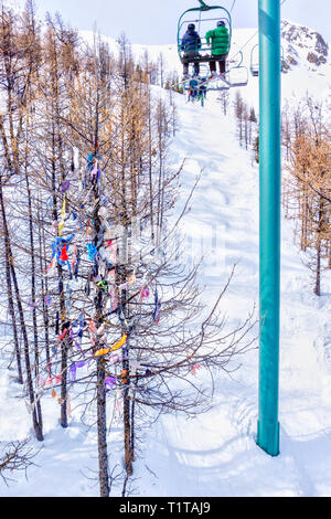 Panty tree in the Canadian Rockies where bras, panties, and Mardi Gras beads cast off by skiers riding the chair lift decorate its branches, a traditi - Stock Image