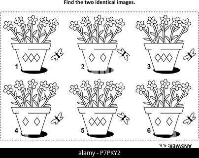 IQ training find the two identical pictures with potted flowers visual puzzle and coloring page. Answer included. - Stock Image