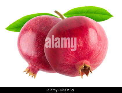 Two pomegranates on a bransh isolated on white background with clipping path - Stock Image