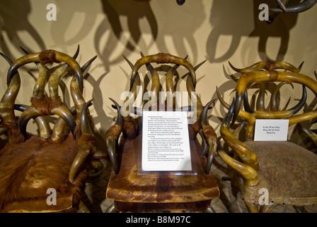 Buckhorn Saloon and Museum San Antonio Texas tx handmade chairs from animal buffalo horns - Stock Image