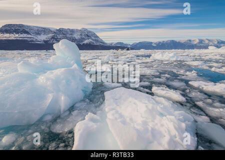 Greenland. Scoresby Sund. Gasefjord. Brash ice and bergy bits. - Stock Image