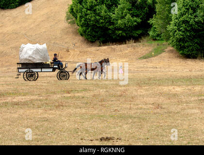 Duncan Mills, CA - July 14, 2018: Horse wagon at the Northern California's Civil war reenactment. This Civil War Days is one of the largest reenactmen - Stock Image
