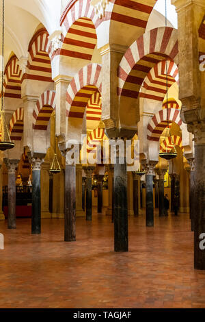 Arches and columns, Mosque Cathedral, Cordoba, Spain - Stock Image