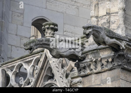 The famous gargoyles of Notre Dame de Paris, a gothic architectural feature used to divert rain water from the roof and convey it away from the walls - Stock Image