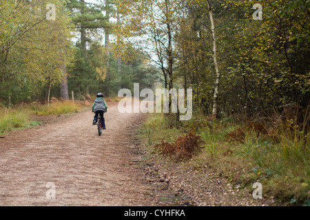 Boy in green jumper and cycling helmet rides his bike through a forest trail into the distance, in Moors Valley - Stock Image